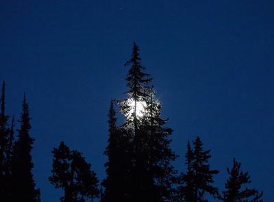 Dead Lake Full Moon