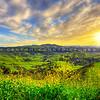 paso-green hills-9121-e