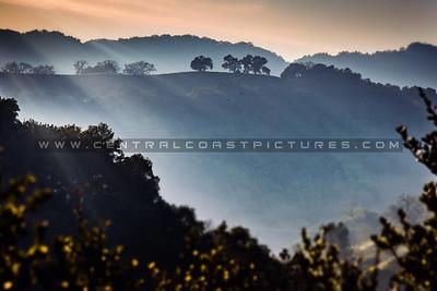 paso hills-9835