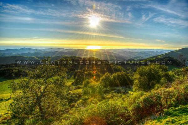 hwy 46 green hills-9846