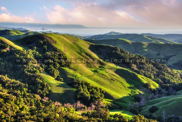 hwy 46 hills 9882