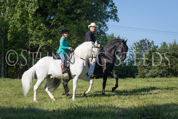 Saddle Photos 2015