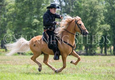 Mounted Shooting  - Michael