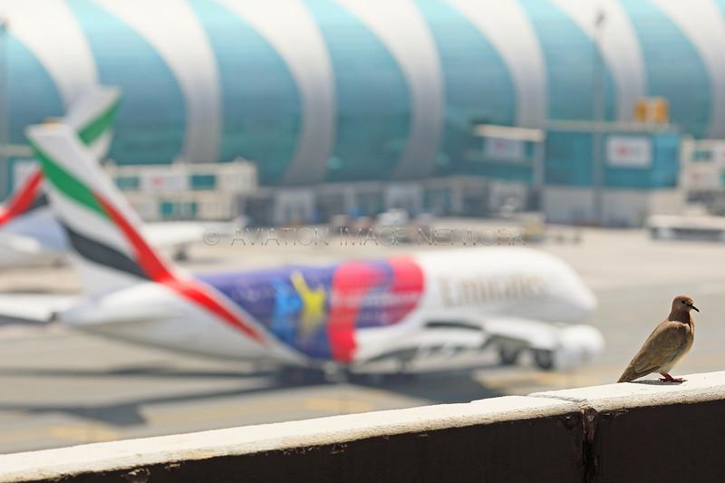 A6-EOH | Airbus A380-861 | Emirates