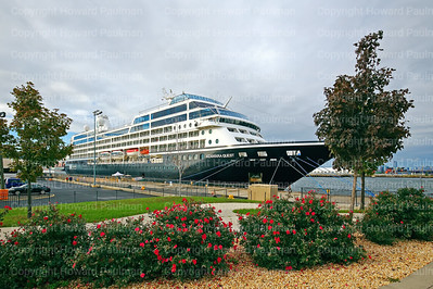 Amazara Cruise Line