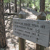 Trail sign on summit of Bearhead Saddle (UNP). Bearhead Peak Trail heading south to Bearhead Peak Lookout Tower behind sign. (July 2010)
