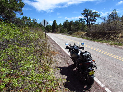 NM- Continental Divide (NM Highway 595 [1])
