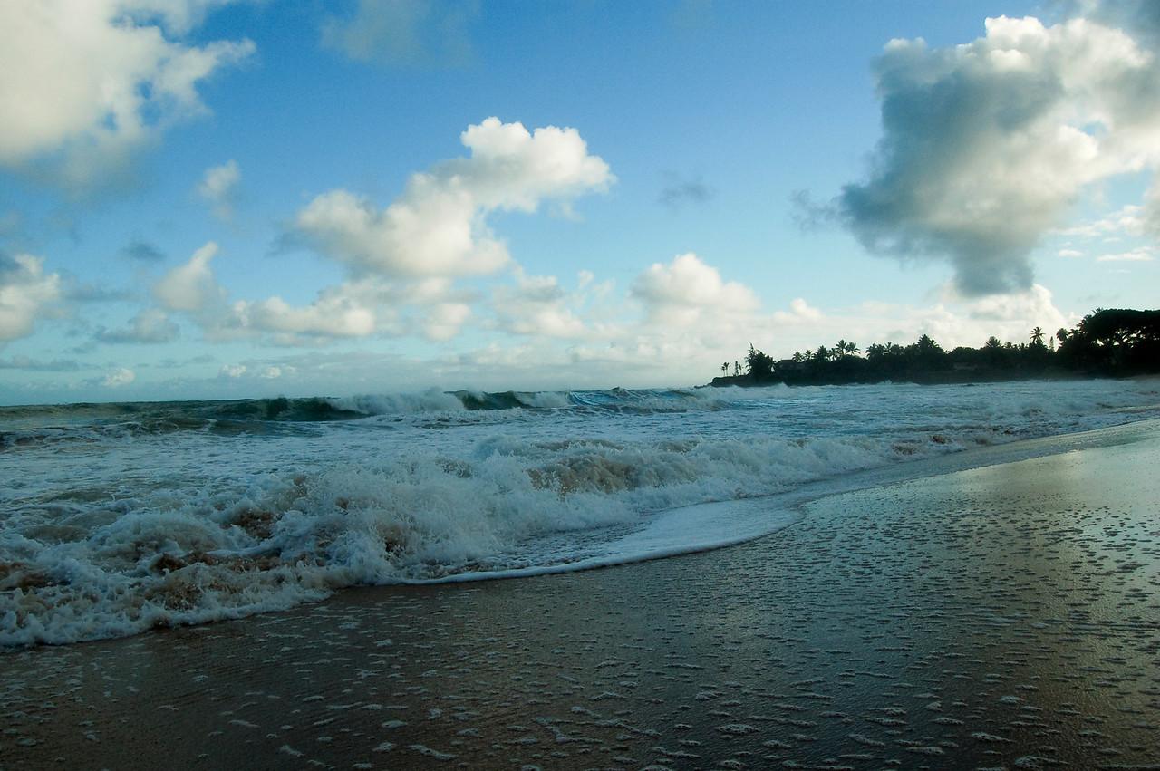 Hawaii - Paya