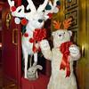WA_0825 Doubles holiday animals