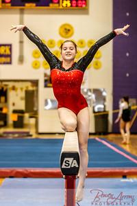 AHS Gymnastics 2014-0340