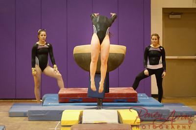 AHS Gymnastics 2014-0208