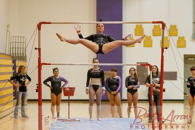 AHS Gymnastics 2014-0269