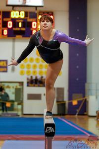 AHS Gymnastics 2014-0377
