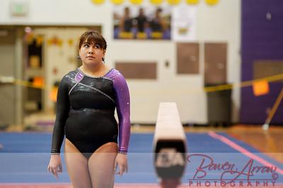 AHS Gymnastics 2014-0359
