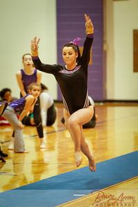 AHS Gymnastics 2014-0221