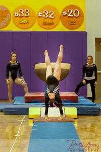 AHS Gymnastics 2014-0205