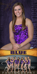 01 Blue Banner