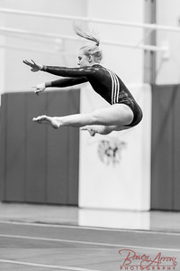 Gymnastics vs Coldwater 20160222-0807