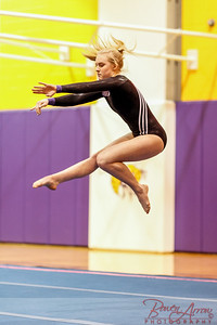 Gymnastics vs Coldwater 20160222-0804