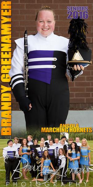 Brandy Greenamyer Banner