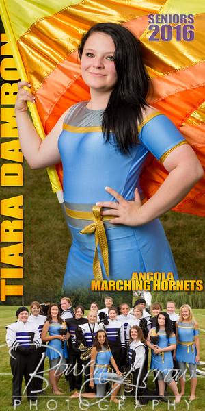 Tiara Damron Banner