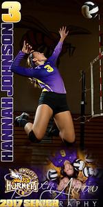 Hannah Johnson VB Banner