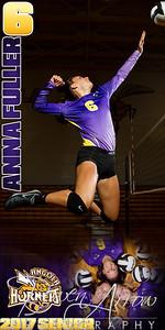Anna Fuller VB Banner