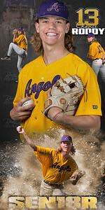 Chance Roddy Baseball Banner