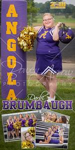 Cheer Darbi Brumbaugh Banner