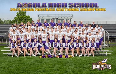 FB 2017 Sectional Champions-0016-3