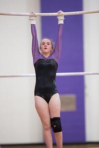 Gymnastics vs Coldwater 20180219-0144