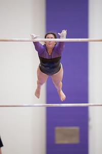 Gymnastics vs Coldwater 20180219-0168