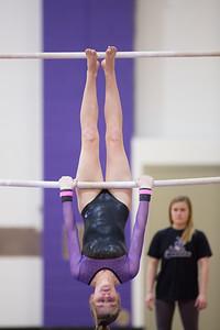 Gymnastics vs Coldwater 20180219-0126