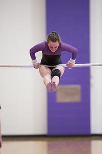 Gymnastics vs Coldwater 20180219-0140