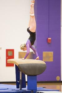 Gymnastics vs Coldwater 20180219-0032