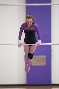 Gymnastics vs Coldwater 20180219-0138