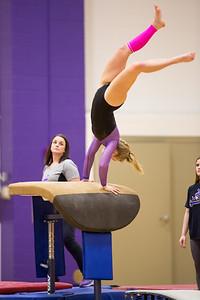 Gymnastics vs Coldwater 20180219-0082