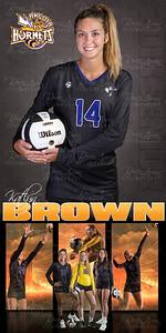 Katlyn Brown VB Banner