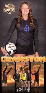 Ali Cranston VB Banner