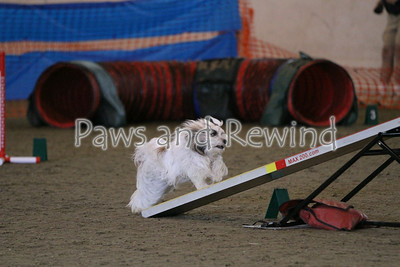 Canine Events 2014