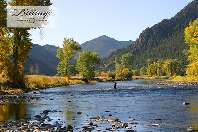 Billings Fly Fishing