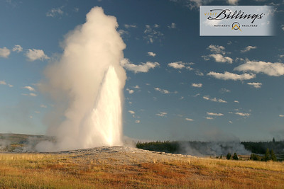 Billings Old Faithful