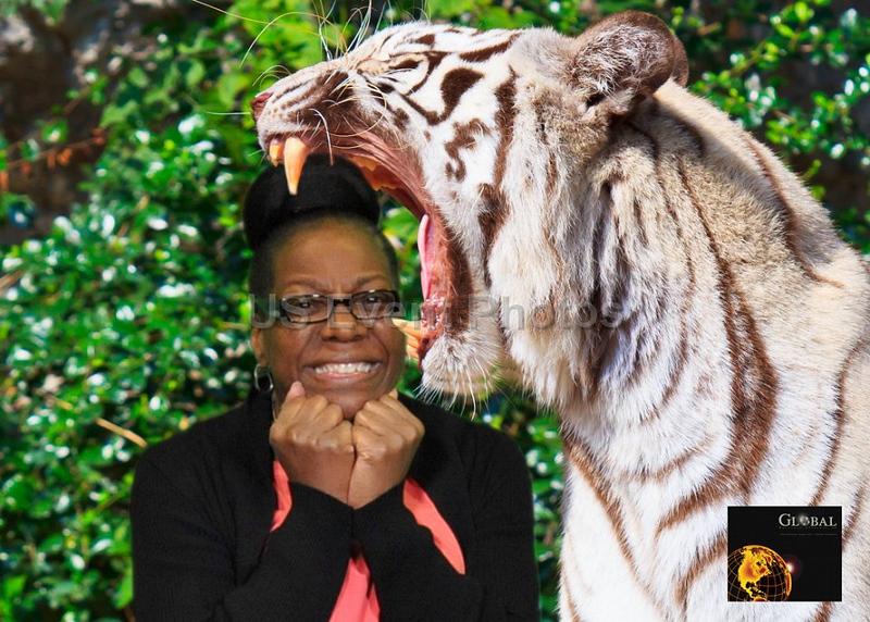 Africa safari 2