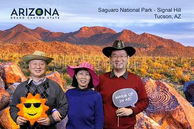 Arizona Saguaro national Park Signal hill