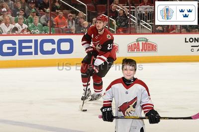 Arizona Hockey 3