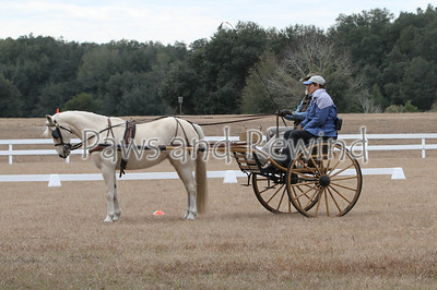 Equestrian Events 2012