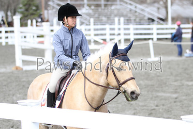 Past Equestrian Events