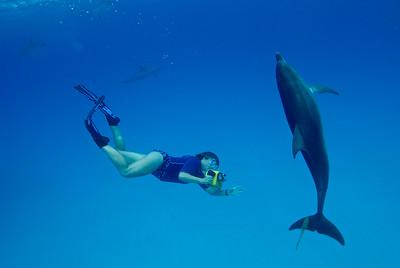 Denise Herzing of the Wild Dolphin Project, near the Bahamas
