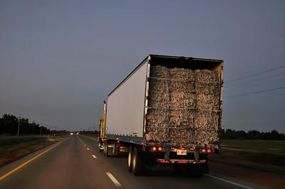 Cotton Truck rollin down Hwy 61 through Clarksdale
