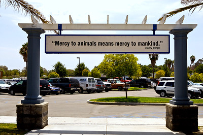 At the entrance to the SPCA-LA, the Society for the Prevention of Cruelty to Animals, Los Angeles
